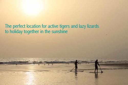Yoga Retreats & surfing holidays in Morocco